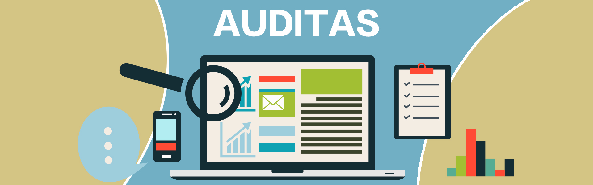 e-marketingo auditas